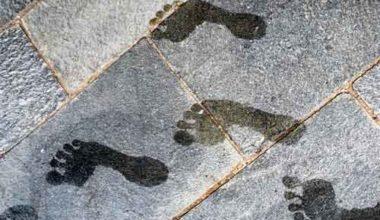 Warum Barfußschuhe die Fußgesundheit fördern