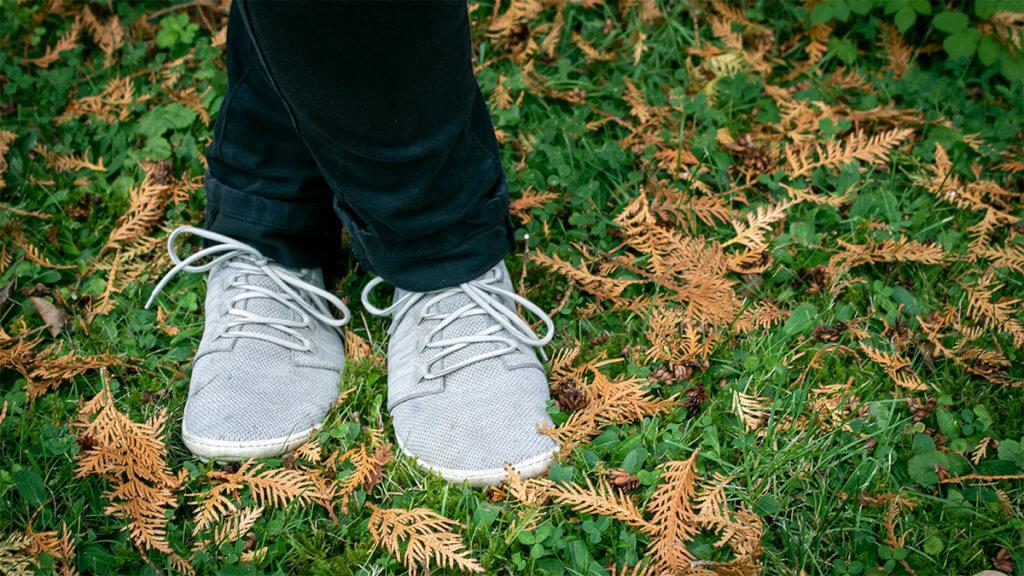 Ein Paar hellgraue Barfußschuhe Sneaker auf grüner Wiese.